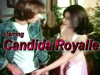 Old-school Porn Industry Star Candida Royalle